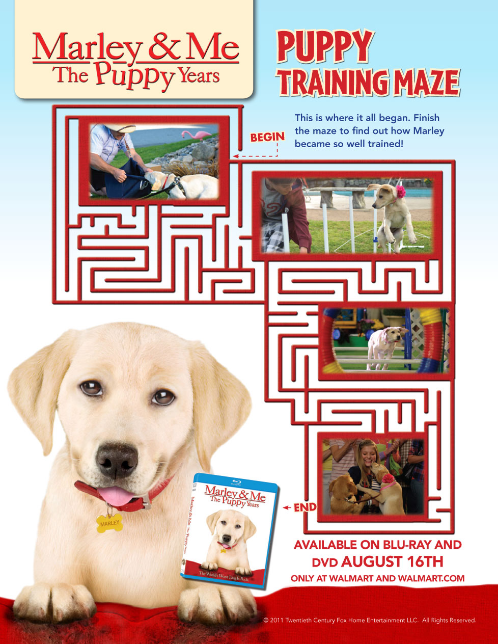 marley and me maze