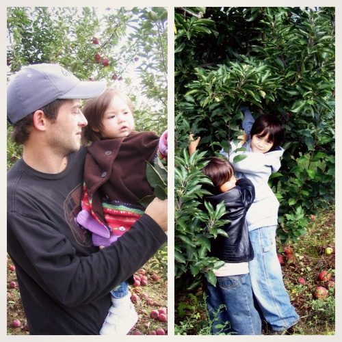 pick your own apples in Delaware