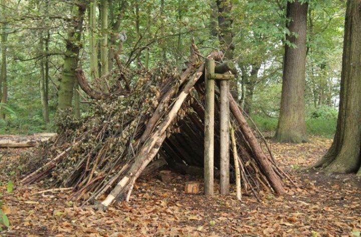 Самодельный шалаш в лесу своими руками 91